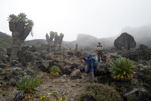 atmospheric_perspective_factors_kilimanjaro_mist